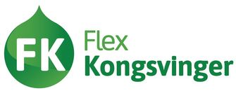 Flex Kongsvinger AS logo
