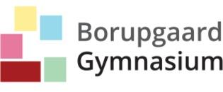 Borupgaard Gymnasium logo