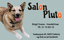 Salon Pluto logo