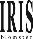 Iris Blomster logo