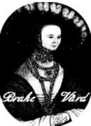 Brahe Vård, AB logo