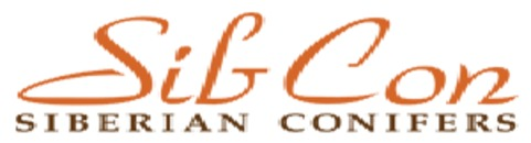 Sibcon logo