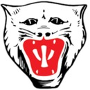 Vikersund Idrettsforening logo
