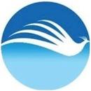 Storm Entreprise & Service v/Kim Storm Larsen logo