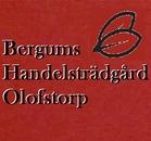 Bergums Handelsträdgård logo