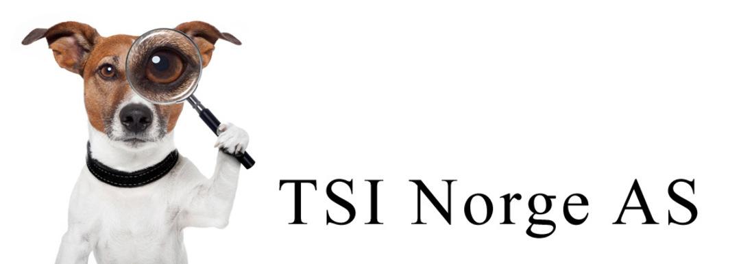 B & S Privatetterforskning logo