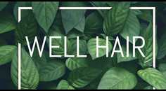 Well Hair AS logo