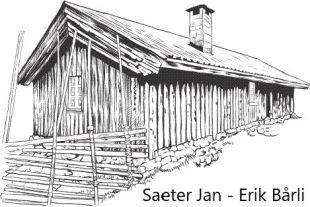 Saeter Jan Erik Bårli logo