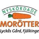 Nyskördade Morötter I Fjälkinge AB logo