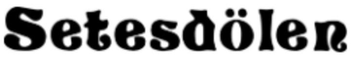 AS Setesdølen logo