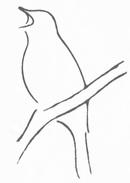 Nattergale Møbler logo