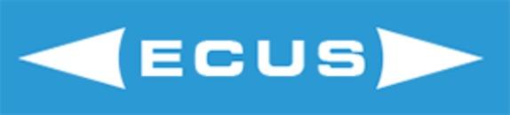 Ecus Electronic Custom Support AB logo