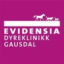 Evidensia Dyreklinikk Gausdal logo