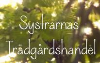 Systrarnas Trädgårdshandel AB logo