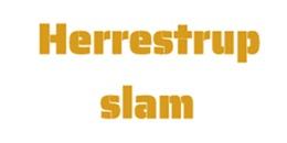 Herrestrup Slam Entreprenør Og Kloakservice logo