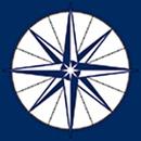 Dalsgaard, Stahl & Wøldike. Godkendt Revisionsanpartsselskab logo