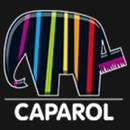 Caparol Färg Flen logo