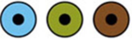 Fokus Øyeklinikk logo