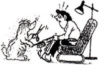 Skipperen's Hundesalon logo