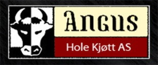 Hole Kjøtt AS logo