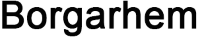 Borgarhem logo