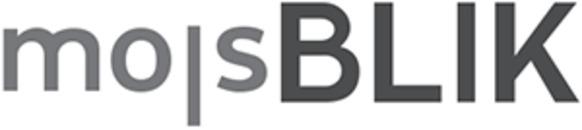 Molsblik logo