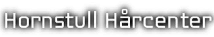Hornstull Hårcenter AB logo