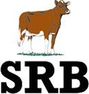 SRB-Föreningen logo