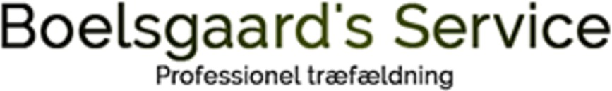 Boelsgaard's Service logo