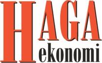 Haga Ekonomi logo