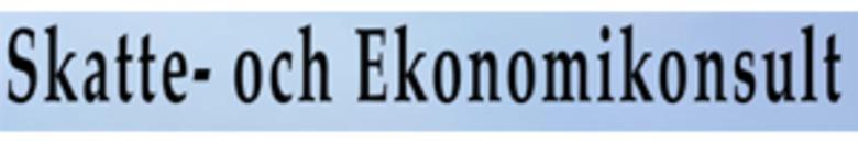 Skatte- och Ekonomikonsult logo