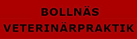 Bollnäs Veterinärpraktik AB logo