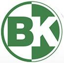 BK VVS Mester logo