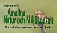 Amalina Natur- och Miljökonsult logo