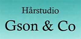 Salong Gson & Co logo