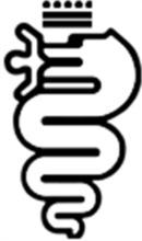 Juel Auto logo