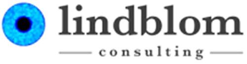 Lindblom Consulting logo