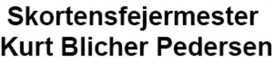 Blichers Skorstensforing logo