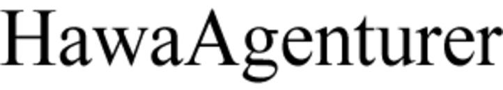 HawaAgenturer AB logo