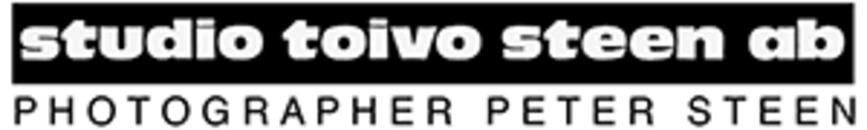Studio Toivo Steen AB logo