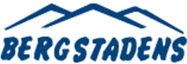 Bergstadens Entreprenad AB logo