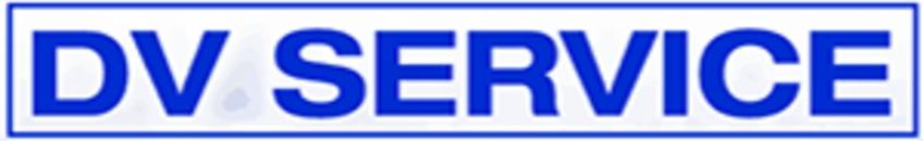 DV Service logo