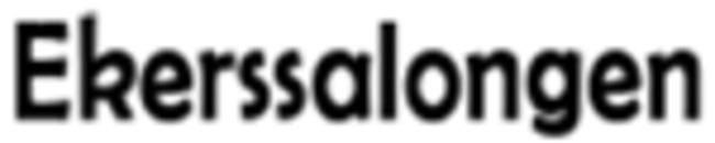Ekerssalongen logo