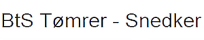 BTS Tømrer - Snedker logo