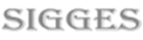 Sigges Riv O Sanering logo