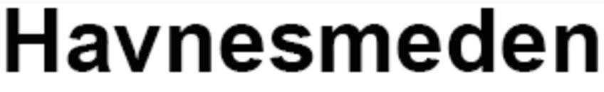 Havnesmeden logo