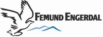 Destinasjon Femund Engerdal AS logo
