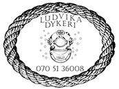 Ludvika Dykeri logo