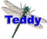 Guldsmed Teddy logo