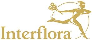 Kampenes Blomster Guro Strømmen Fodnes logo